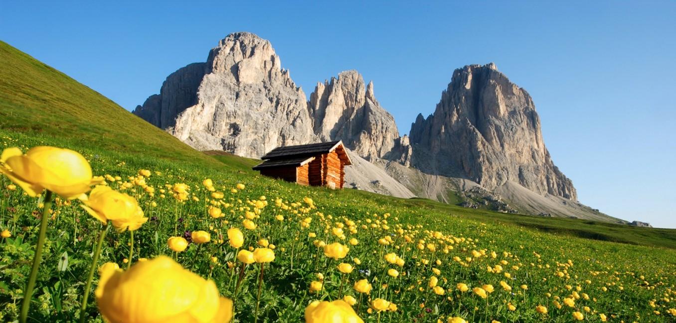 Hotel Canazei Hotel Gonzaga Fassa Valley Dolomites Trentino